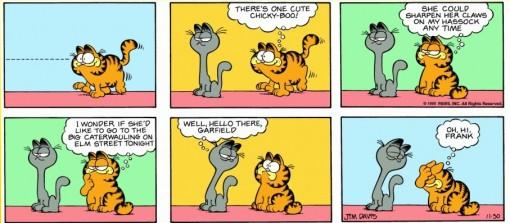 Garfield Myopia