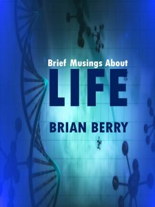 brief-musings-about-life